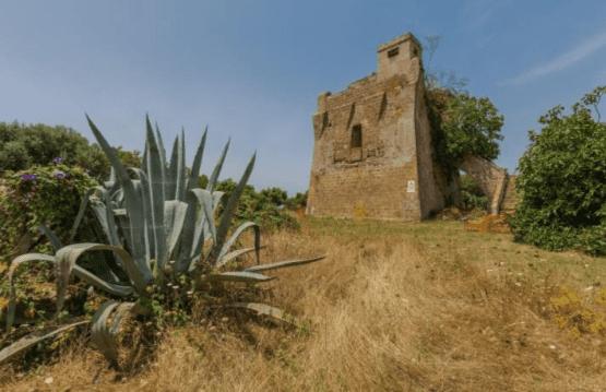 Torre Castelluccia Bosco Caggioni